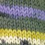 Järbo Mellanraggi Sock Laine 28364 Imprimé Prairie