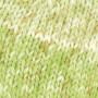Järbo Mellanraggi Sock Laine 28377 Imprimé Vert Pistache